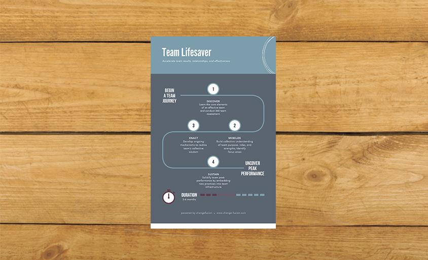 TeamLifesaver_Main